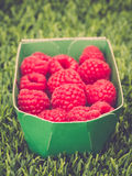 Raspberries in Box Royalty Free Stock Photo