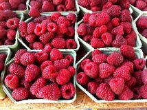 Raspberries. Boxes with fresh red raspberries for sale at farmers market in summer Stock Photography