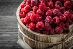 Raspberries in bucket on vintage wooden board close up view.  Stock Photos