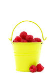 Raspberries in a bucket on a white background. Raspberries in a bucket isolated on a white background Royalty Free Stock Images