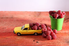 Raspberries in a car. Miniature car carrying raspberry fruits near a green metal bucket full of raspberries Stock Images