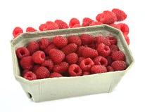 Raspberries in cardboard box. Fresh raspberries in a cardboard box on white background Royalty Free Stock Photo