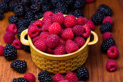 Raspberries in ceramic bowl Royalty Free Stock Photo