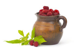 Raspberries in clay jug Stock Photography