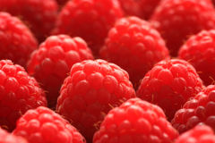 Raspberries Close-up Stock Photo