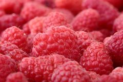 Raspberries Close-up Stock Photography