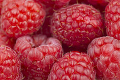 Raspberries. Close up of Raspberries background Stock Photography