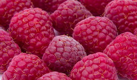 Raspberries close-up background. Pattern texture Stock Photo