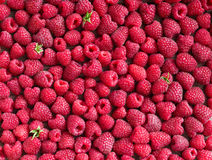Raspberries. Close up, top view, high resolution product. Stock Photography