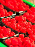 Raspberries in containers for sale at market place. Red raspberries in baskets for sale at market place Royalty Free Stock Photography
