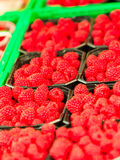 Raspberries in containers for sale at market place. Red raspberries in baskets for sale at market place Royalty Free Stock Photo