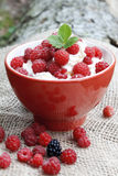 Raspberries with cream,selective focus Royalty Free Stock Photo