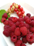 Raspberries and currants. On plate Royalty Free Stock Photography