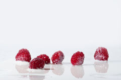 Raspberries Falls Into Milk Royalty Free Stock Image