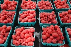 Raspberries at Farmers Market. Organic raspberries at outdoor farmers market Royalty Free Stock Photo
