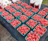 Raspberries at Farmers Market Royalty Free Stock Photo