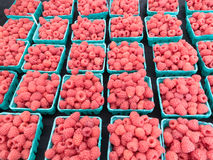 Raspberries at Farmers Market Stock Images