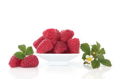 Raspberries and Flower Leaf Sprigs Stock Photo