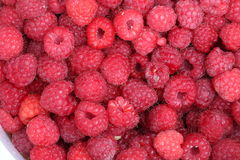 Raspberries. Fresh raspberries in the bucket Stock Photos