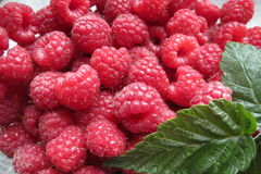 Raspberries. Fresh raspberries with leaves close-up Royalty Free Stock Photos