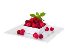 Raspberries. Freshly harvested raspberries great taste and smell Royalty Free Stock Photo
