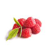 Raspberries fruit Stock Photos