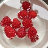 Raspberries. From garden Stock Photos