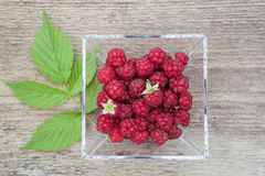 Raspberries in a glass bowl. Stock Photography