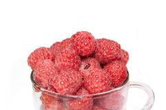 Raspberries in the glass cup on the white background. Raspberries in the glass cup Royalty Free Stock Photography