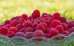 Raspberries in Glass Fruit Cup. Glass container fruit platter containing fresh and natural raspberries on green grass background Stock Images