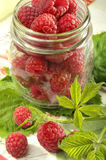 Raspberries in glass jar Stock Photos