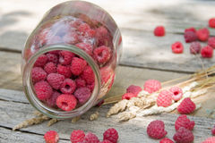 Raspberries in the glass over old aged wood table Royalty Free Stock Images