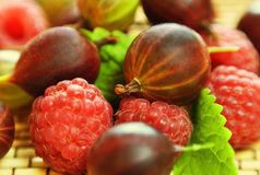 Raspberries & gooseberries Stock Photo