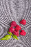 Raspberries on a gray background Royalty Free Stock Photos