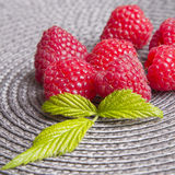 Raspberries on a gray background Stock Images
