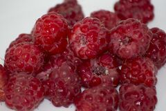 Raspberries are a great source of fiber, manganese and vitamin C. In addition, they contain large amounts of the anti-cancer phyto Royalty Free Stock Image
