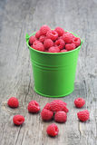 Raspberries in green bucket on wooden background Stock Image