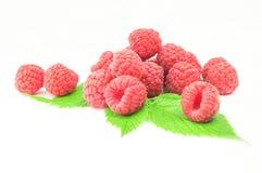 Raspberries on green leaf a white background. Raspberries on green leaf isolated on white background cutout Stock Photo