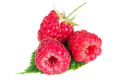 Raspberries on green leaves. Isolated on white background Stock Photo
