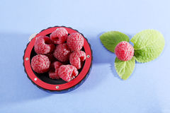 Raspberries and green leaves. Raspberry fruits in some tube lens isolated on blue background Royalty Free Stock Image