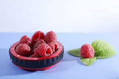 Raspberries and green leaves. Raspberry fruits in some tube lens isolated on blue background Royalty Free Stock Photography