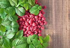Raspberries and green leaves. Red juicy raspberries and green leaves on wooden table.Copy space Royalty Free Stock Photos