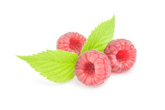 Raspberries with green leaves on white background.  Stock Image