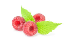 Raspberries with green leaves on white background Royalty Free Stock Photos
