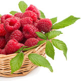Raspberries with green leaves in a wicker basket. Fresh raspberries in the basket  on a white Stock Photography