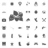 Raspberries icon. Camping and outdoor recreation icons set.  Royalty Free Stock Photos