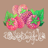 Raspberries. Illustration with raspberries and beautiful florid inscription Stock Images