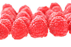 Raspberries isolated Stock Photography