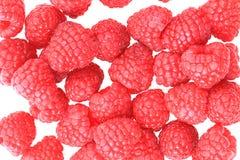 Raspberries isolated Royalty Free Stock Image