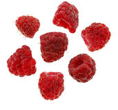 Raspberries isolated on white Stock Photos